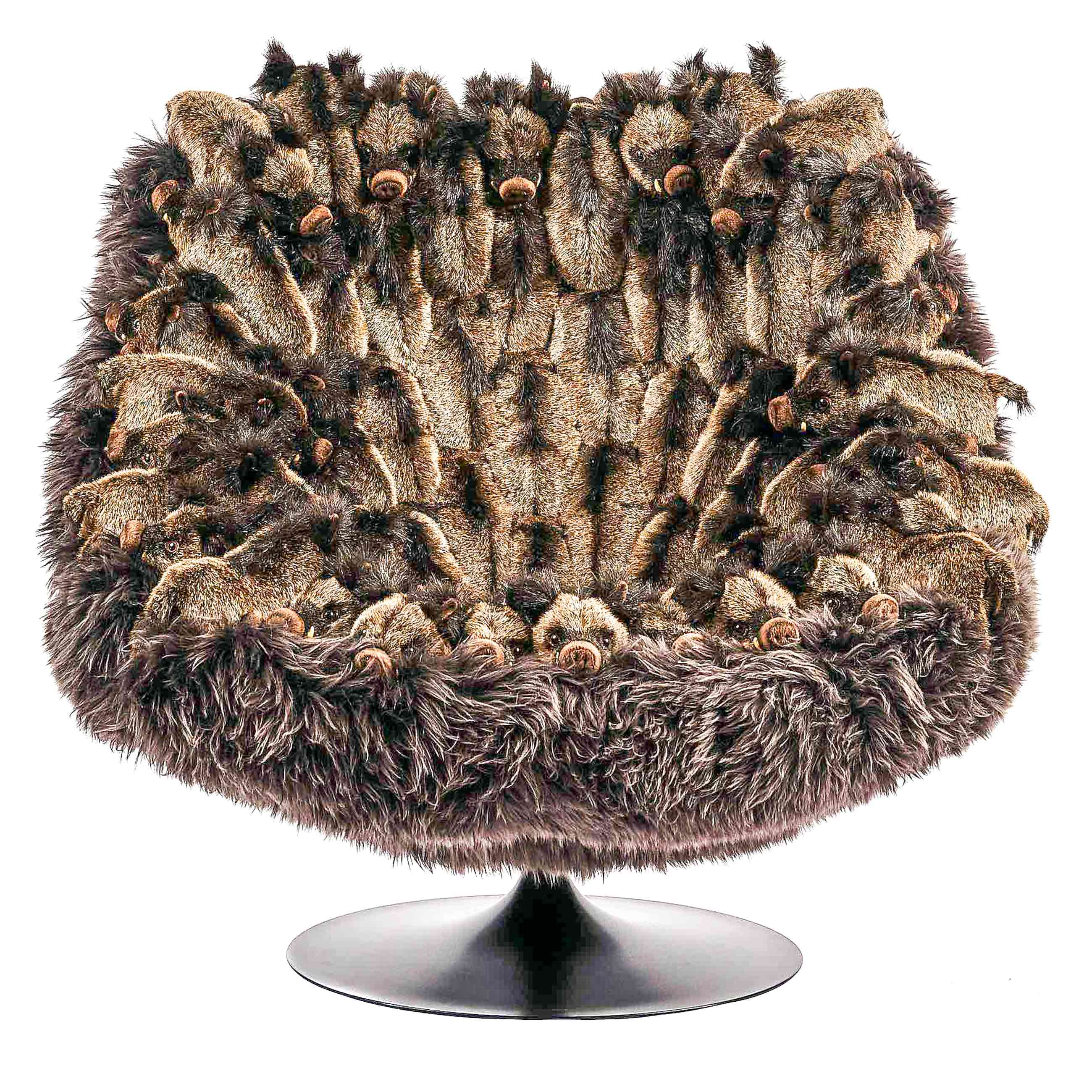 Wildschwein Sessel